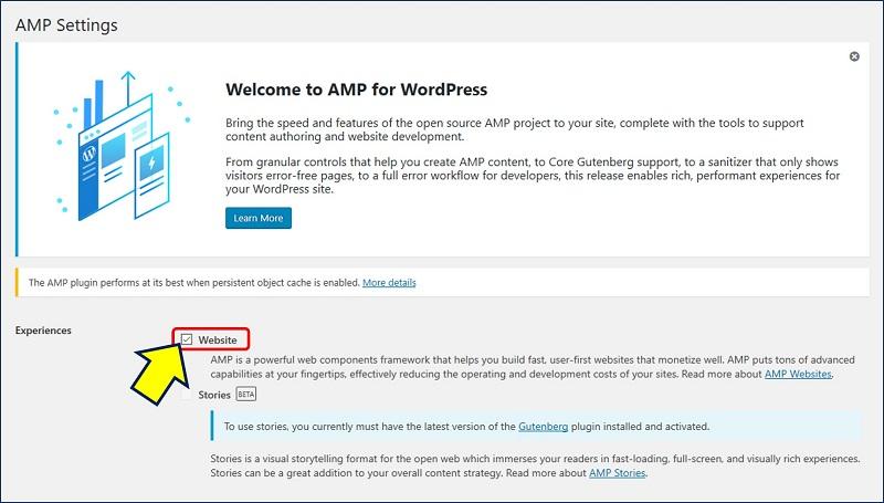 AMP Setting が開くので、「Experience」は「Website」を選択