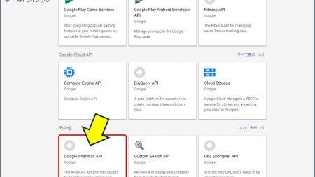 ページ最下部にスクロールし、「Analytics API」をクリックする