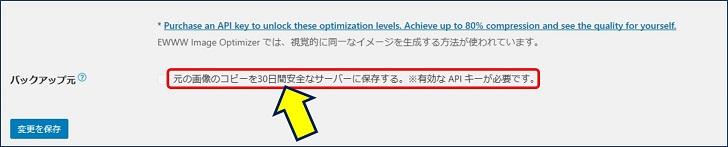 「変更を保存」をクリックすると、「元の画像のコピーを30日間安全なサーバーに保存する。※有効な APIキーが必要です。」のメッセージが出る。