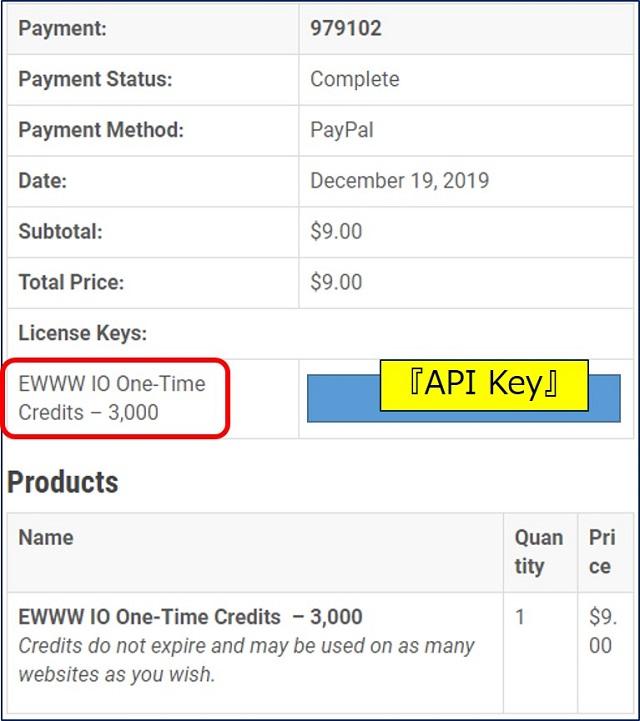 『API Key』が届く