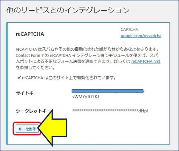 「インテグレーションのセットアップ」から、「v2 チェックボックス」のキーを削除する