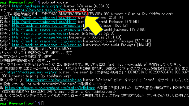 sudo apt update の実行結果
